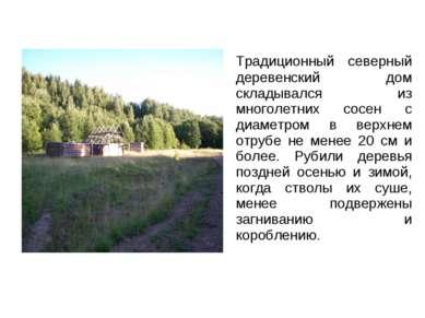 Традиционный северный деревенский дом складывался из многолетних сосен с диам...