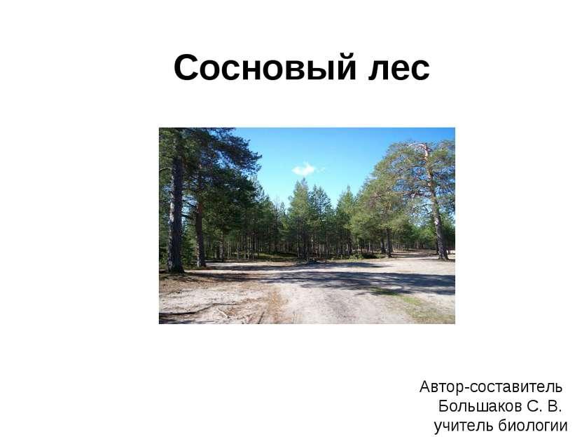 Сосновый лес Автор-составитель Большаков С. В. учитель биологии
