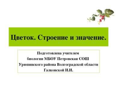 Цветок. Строение и значение. Подготовлена учителем биологии МБОУ Петровская С...