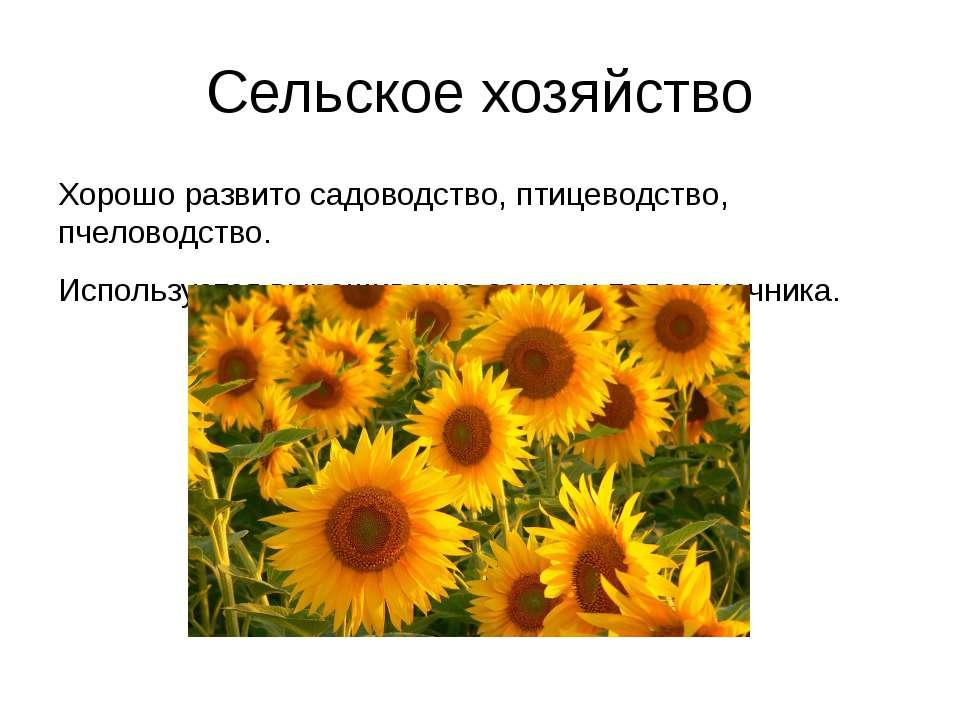 Сельское хозяйство Хорошо развито садоводство, птицеводство, пчеловодство. Ис...