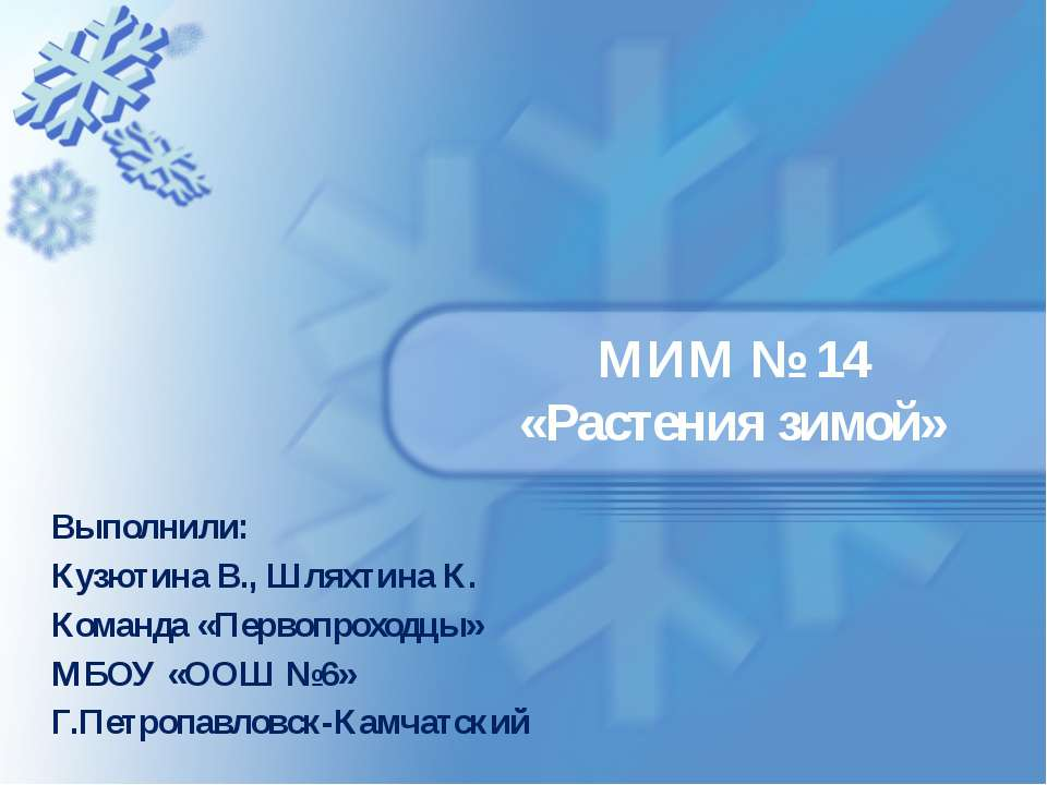 МИМ № 14 «Растения зимой» Выполнили: Кузютина В., Шляхтина К. Команда «Первоп...