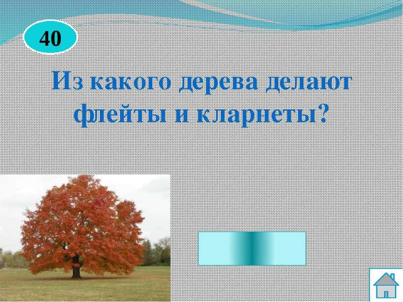 Из клёна Из какого дерева делают флейты и кларнеты? 40
