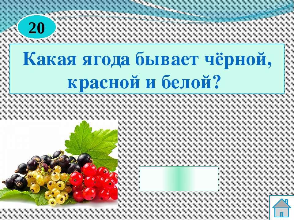 Клюква Какая ягода по своим качествам может заменить лимон? 50