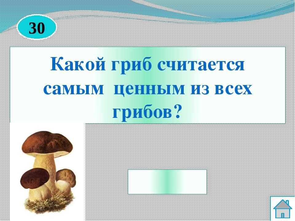 Шиповник http://krasivovnorme.ru/uploads/posts/2015/2/vitamin-r_2.jpg Берёза ...