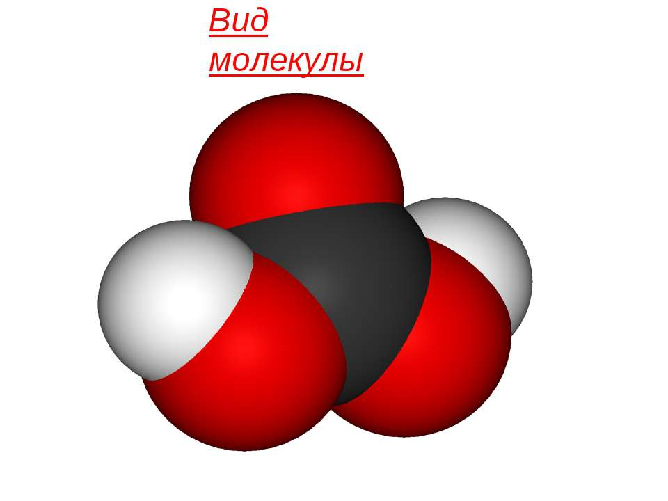 Вид молекулы