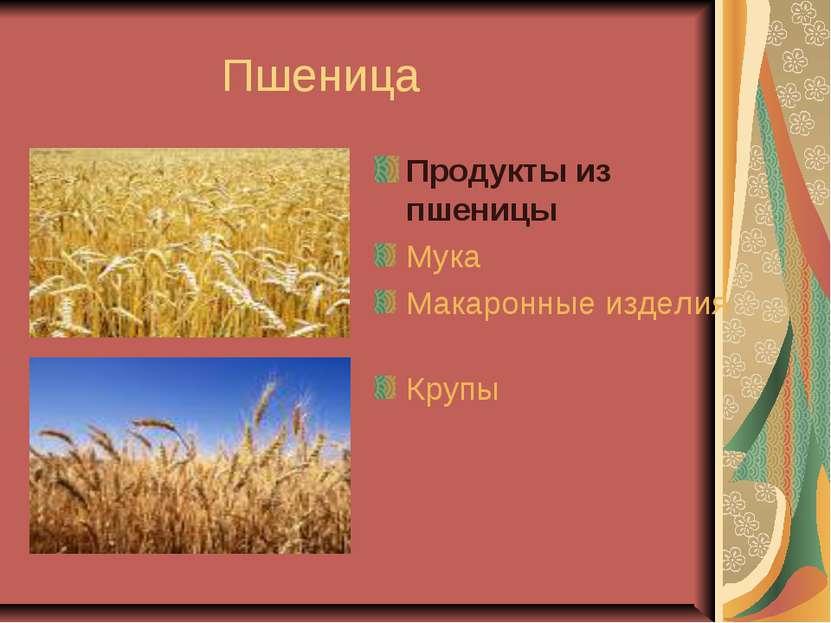 Пшеница Продукты из пшеницы Мука Макаронные изделия Крупы