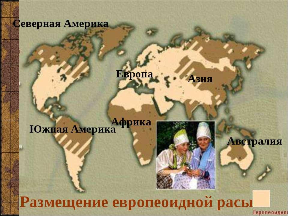Размещение европеоидной расы Европа Азия Северная Америка Южная Америка Африк...