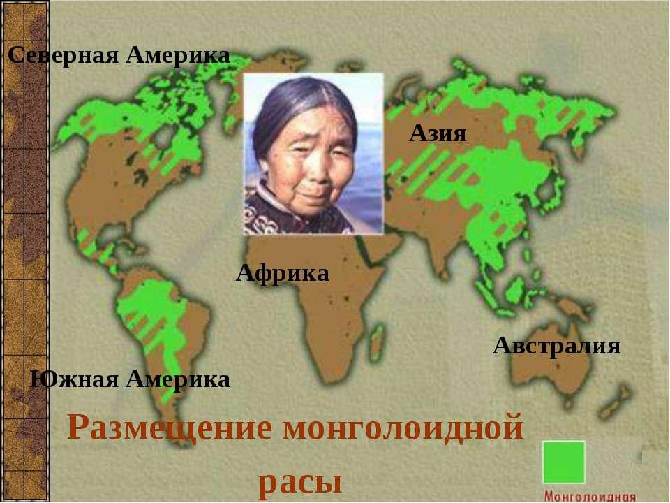 Размещение монголоидной расы Северная Америка Южная Америка Азия Африка Австр...