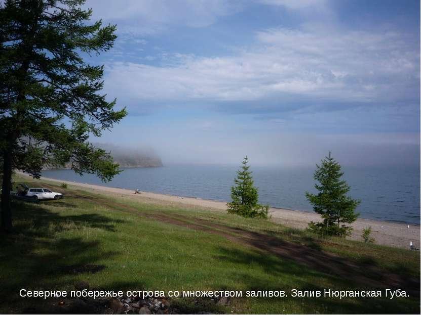 Северное побережье острова со множеством заливов. Залив Нюрганская Губа.