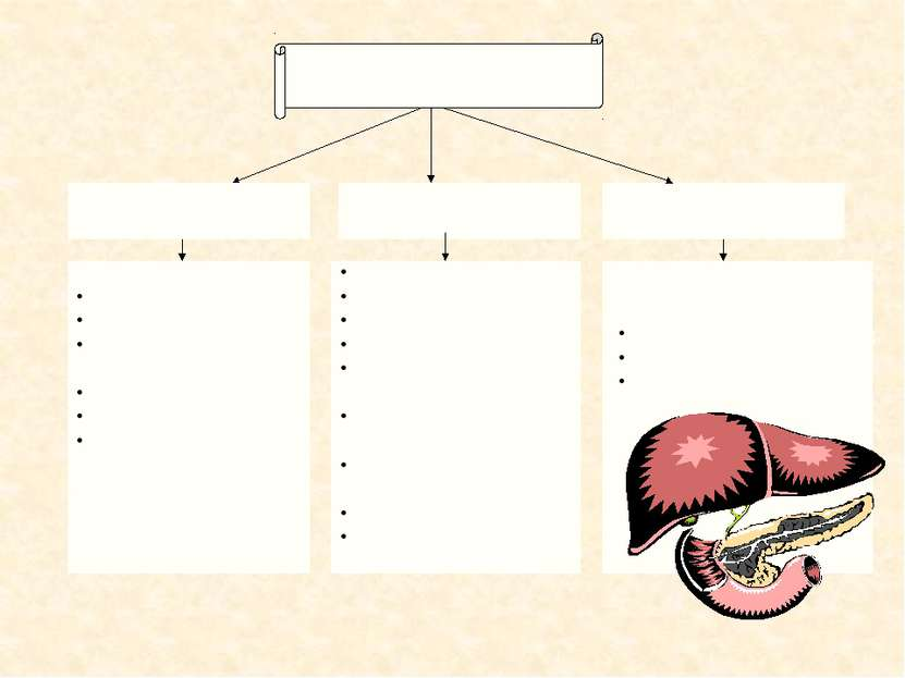 Железы внутренней секреции Железы смешанной секреции Железы внешней секреции ...