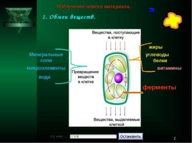 * белки жиры углеводы микроэлементы вода Минеральные соли витамины ферменты I...