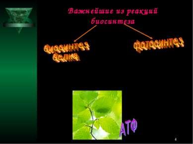 * Важнейшие из реакций биосинтеза