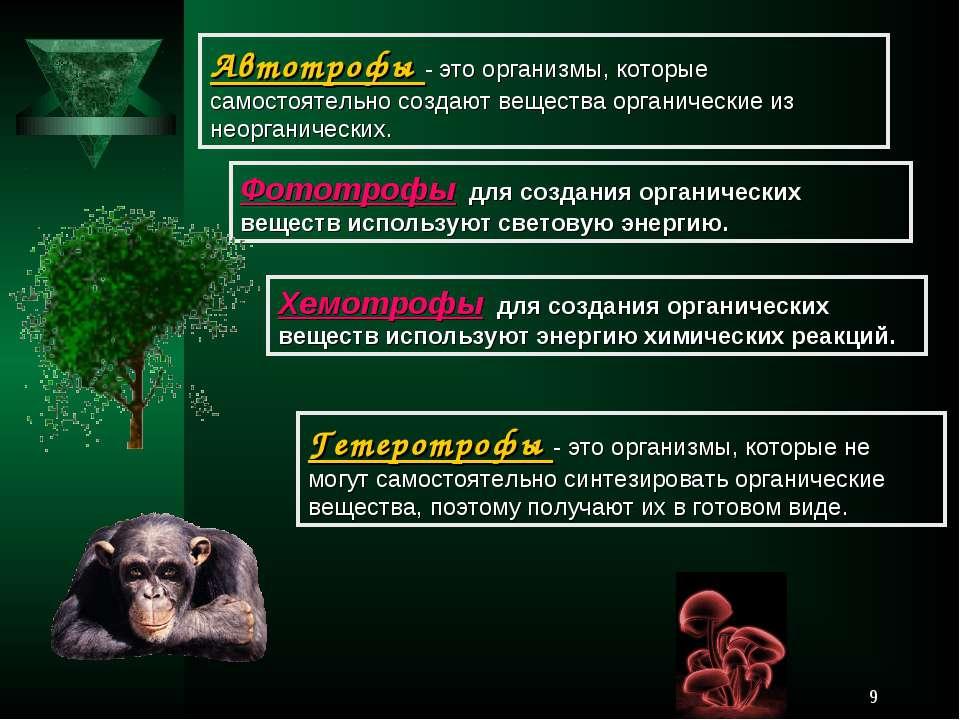 * Автотрофы - это организмы, которые самостоятельно создают вещества органиче...