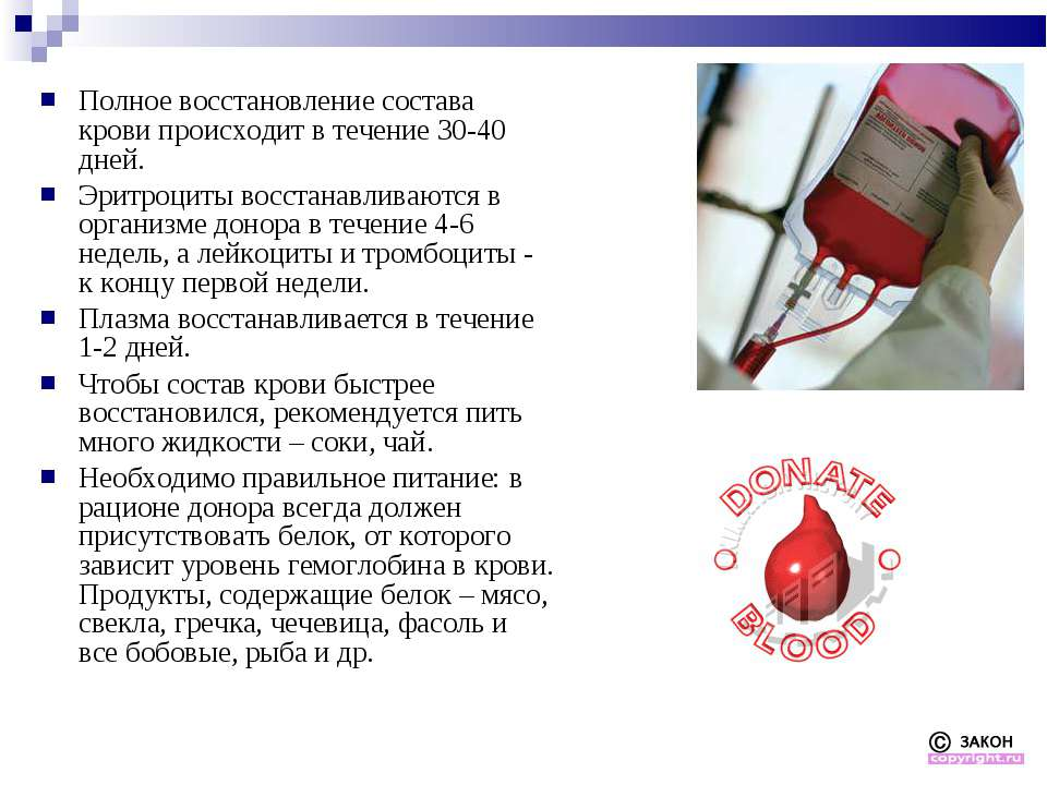 Полное восстановление состава крови происходит в течение 30-40 дней. Эритроци...