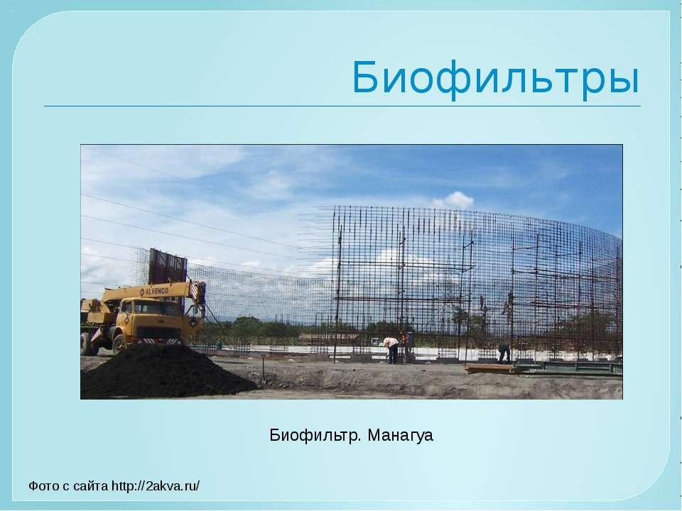 Биофильтры Биофильтр. Манагуа Фото с сайта http://2akva.ru/
