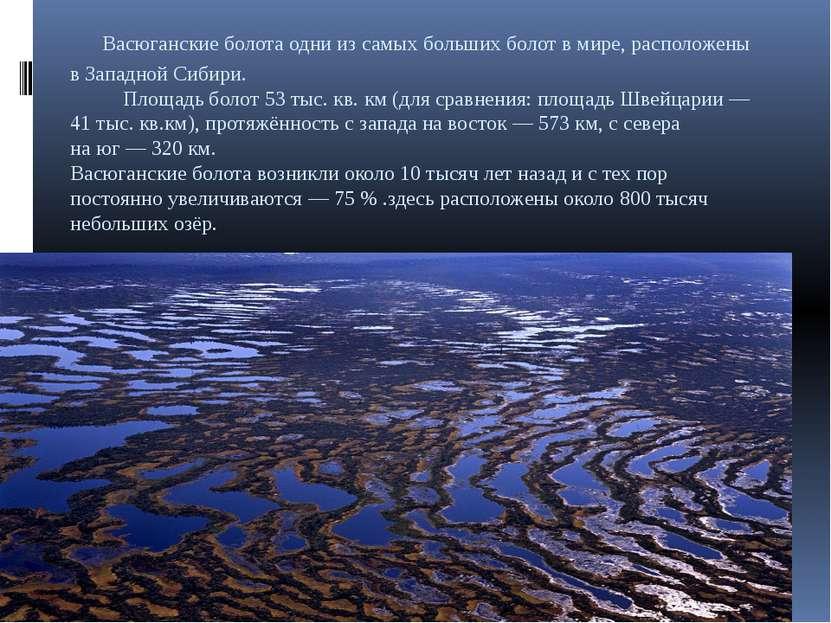 Васюганские болота одни изсамых больших болот вмире, расположены вЗападной...