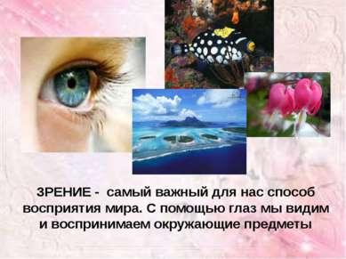 ЗРЕНИЕ - самый важный для нас способ восприятия мира. С помощью глаз мы видим...