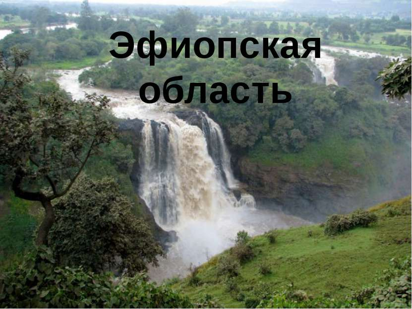 Эфиопская область