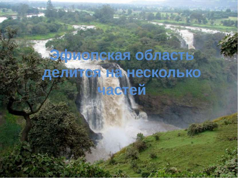 Эфиопская область делится на несколько частей