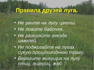 Правила друзей луга. Не рвите на лугу цветы. Не ловите бабочек. Не разоряйте ...