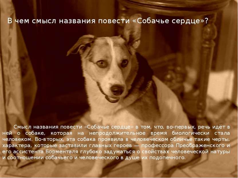 В чем смысл названия повести «Собачье сердце»? Смысл названия повести «Собачь...