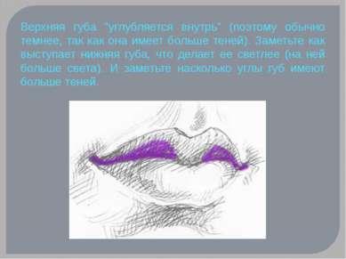 """Верхняя губа """"углубляется внутрь"""" (поэтому обычно темнее, так как она имеет б..."""