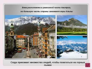 Вена расположена в равнинной части Австрии, Вена расположена в равнинной част...