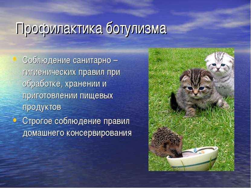 Профилактика ботулизма Соблюдение санитарно – гигиенических правил при обрабо...