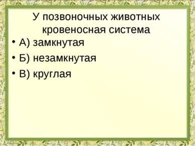 У позвоночных животных кровеносная система А) замкнутая Б) незамкнутая В) кру...