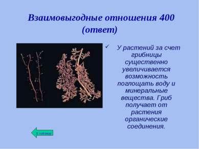Взаимовыгодные отношения 400 (ответ) У растений за счет грибницы существенно ...