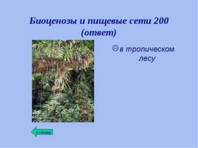 Биоценозы и пищевые сети 200 (ответ) в тропическом лесу