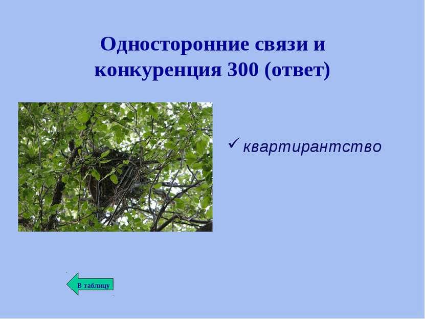 Односторонние связи и конкуренция 300 (ответ) квартирантство