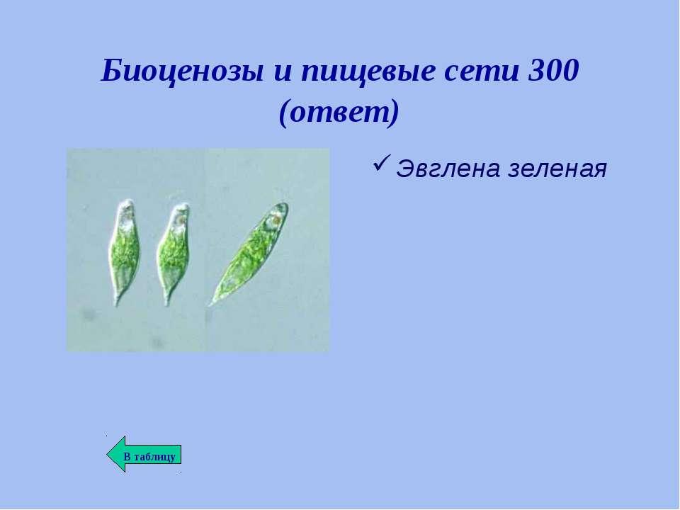 Биоценозы и пищевые сети 300 (ответ) Эвглена зеленая