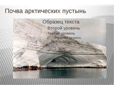 Почва арктических пустынь
