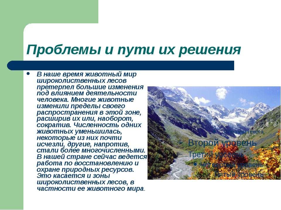 Проблемы и пути их решения В наше время животный мир широколиственных лесов п...