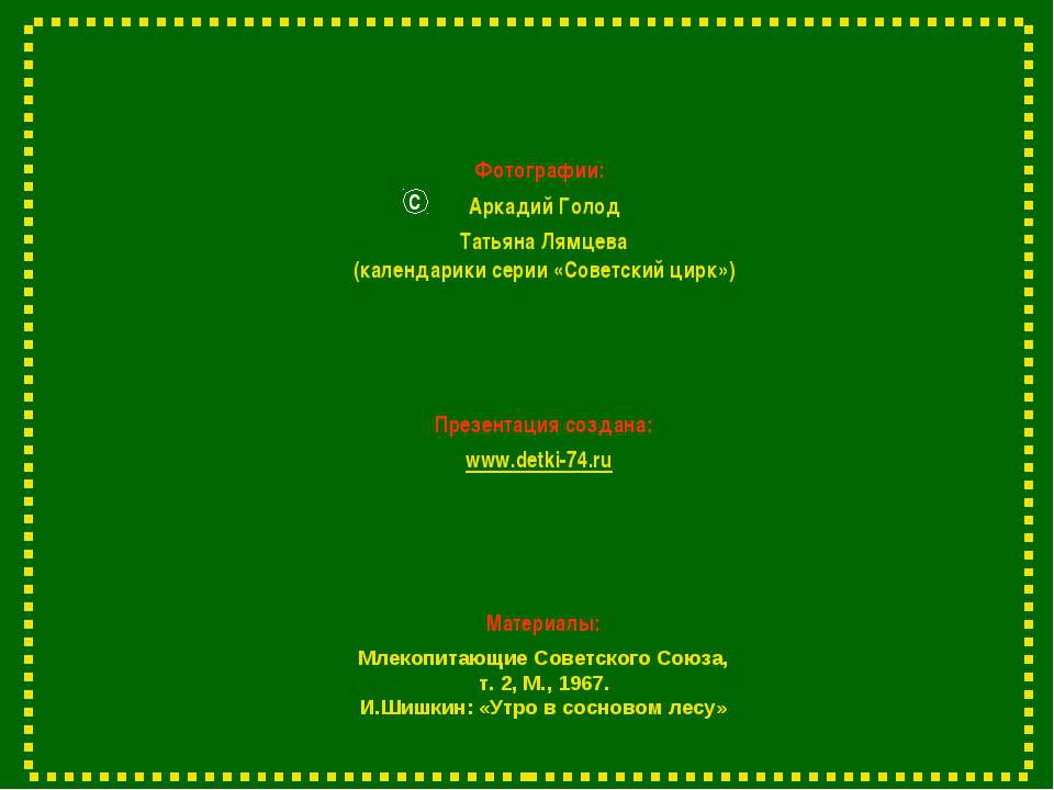 Фотографии: Аркадий Голод С Презентация создана: www.detki-74.ru Млекопитающи...
