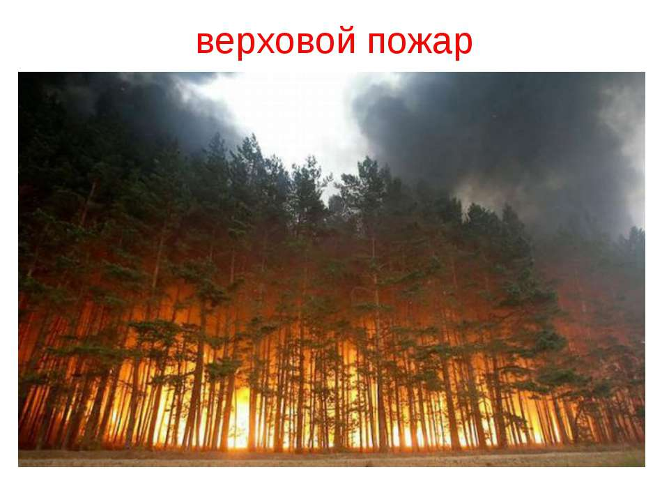 верховой пожар