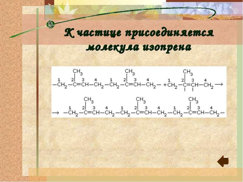 К частице присоединяется молекула изопрена
