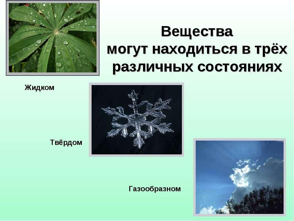 Вещества могут находиться в трёх различных состояниях Жидком Твёрдом Газообра...