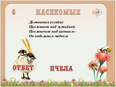 Домовитая хозяйка Пролетает над лужайкой, Похлопочет над цветком - Он поделит...
