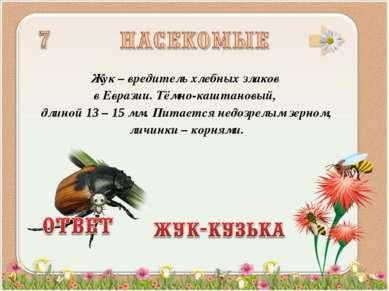 Жук – вредитель хлебных злаков в Евразии. Тёмно-каштановый, длиной 13 – 15 мм...