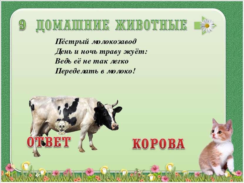 Пёстрый молокозавод День и ночь траву жуёт: Ведь её не так легко Переделать в...