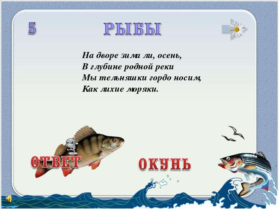 На дворе зима ли, осень, В глубине родной реки Мы тельняшки гордо носим, Как ...