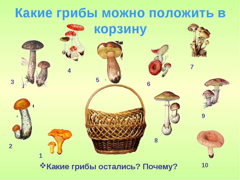 Какие грибы можно положить в корзину Какие грибы остались? Почему? 1 2 3 4 5 ...