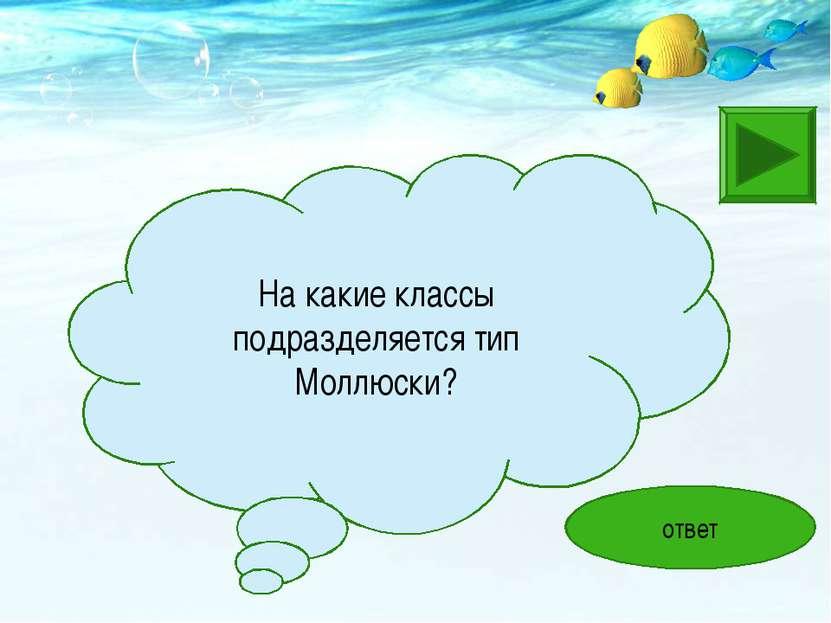 На какие классы подразделяется тип Моллюски? ответ