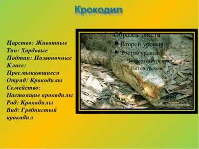 Царство: Животные Тип: Хордовые Подтип: Позвоночные Класс: Пресмыкающиеся Отр...