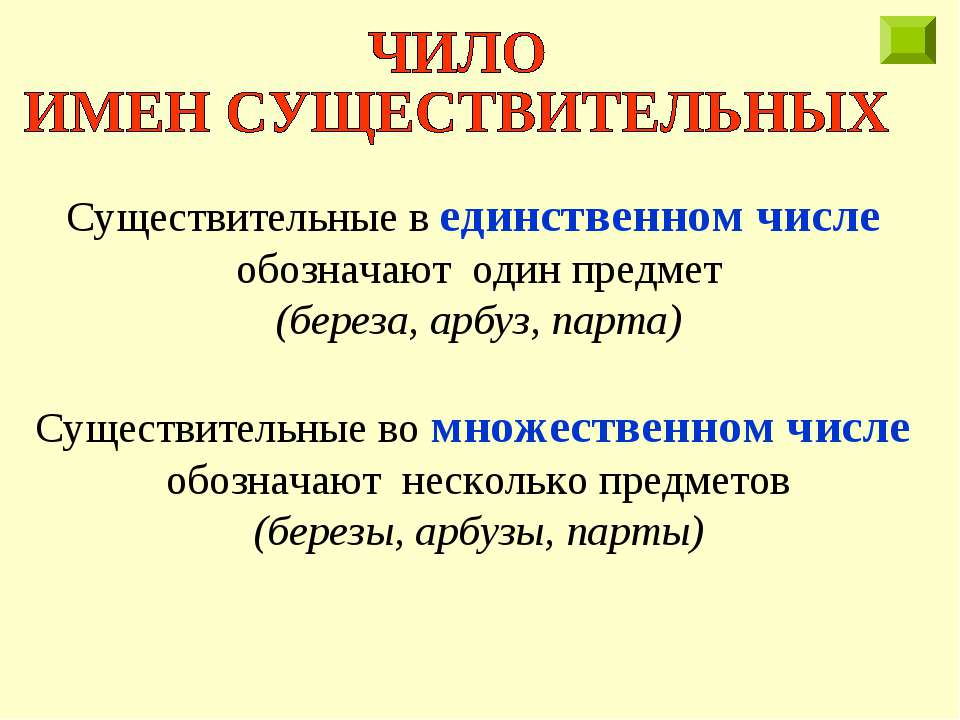 Существительные в единственном числе обозначают один предмет (береза, арбуз, ...