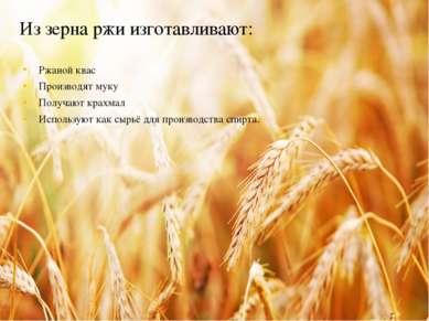 Из зерна ржи изготавливают: Ржаной квас Производят муку Получают крахмал Испо...