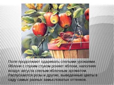 Поля продолжают одаривать спелыми урожаями. Яблоня с глухим стуком роняет ябл...