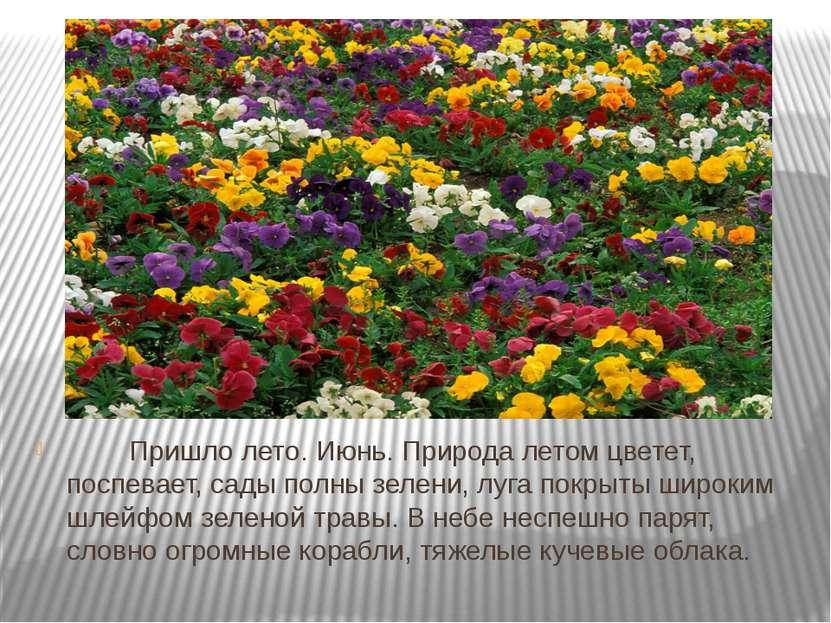 Пришло лето. Июнь. Природа летом цветет, поспевает, сады полны зелени...